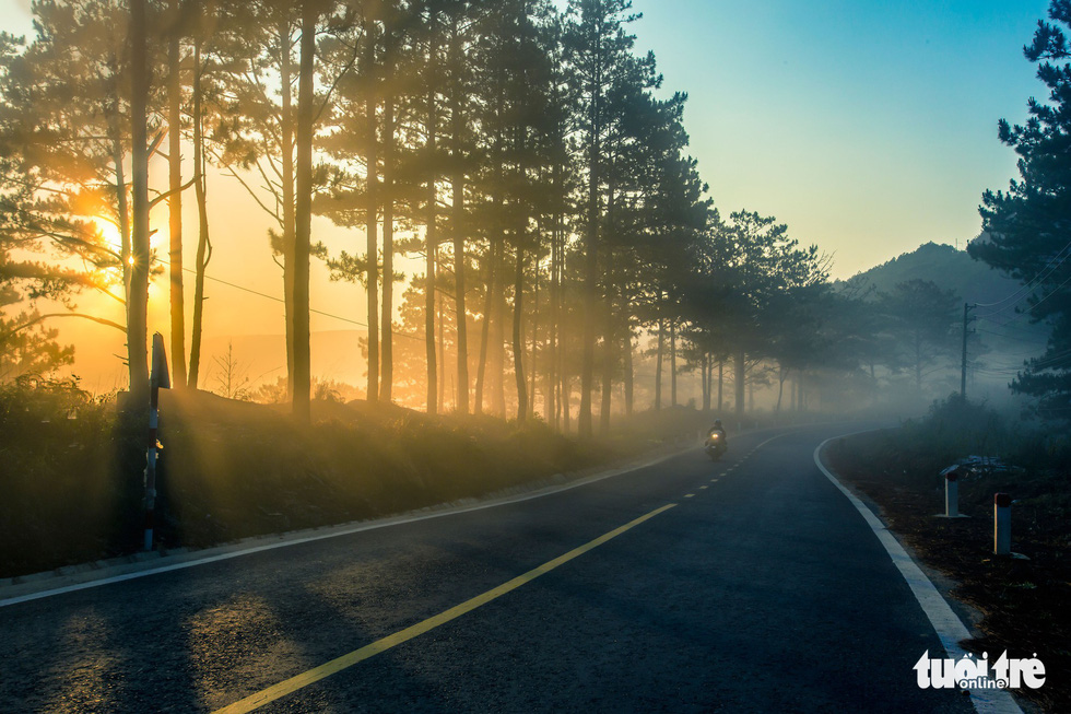 A road in Da Lat is covered in fog in the early morning hours. Photo: Tuoi Tre