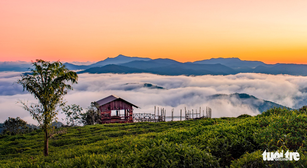 A place nicknamed 'San May' (Cloud Hunt) in Da Lat, where visitors can observe clouds flowing under their feet. Photo: Tuoi Tre