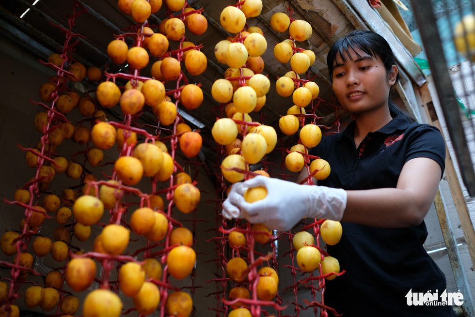 The persimmons are hung on plastic hangers. Photo: Tuoi Tre