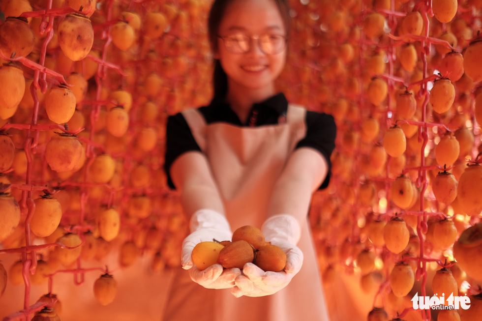 Japanese persimmon-drying technique rescues Da Lat farmers