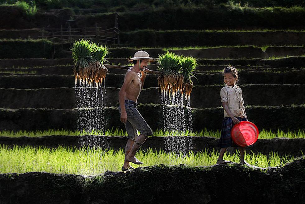 """Photo """"Du lich trai nghiem o Mu Cang Chai"""" (Experience tourism in Mu Cang Chai) by Le Trung Kien"""