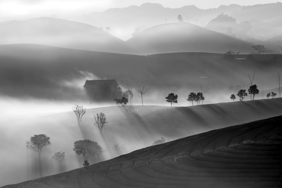 "Photo ""Suong som Moc Chau"" (Early frost in Moc Chau) by Cao Ky Nhan"