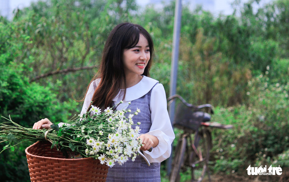 Blossoming daisies decorate Hanoi as temps take downward turn