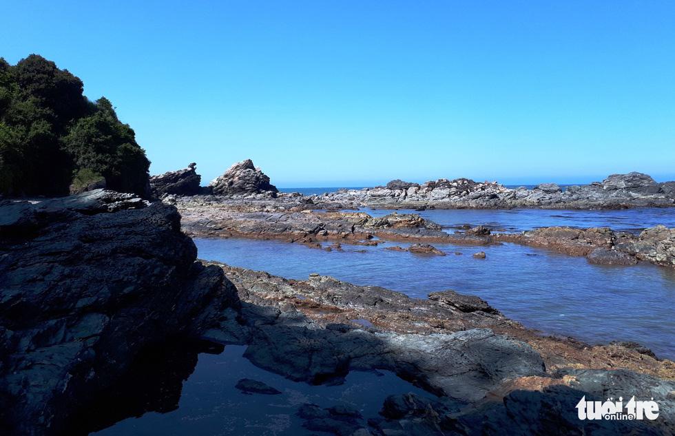 Sedimentary rocks along the beach