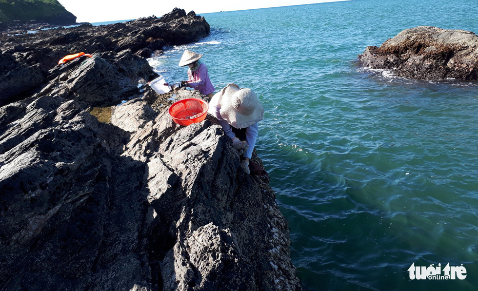 Local residents hunt for oysters at the Ban Than Peak.