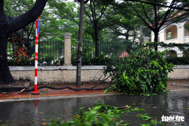 A tree branch is broken by strong winds in Ba Ria- Vung Tau. Photo: Tuoi Tre