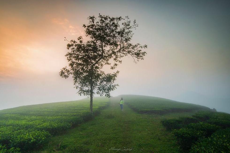 Photo: Pham Hoang Cuong