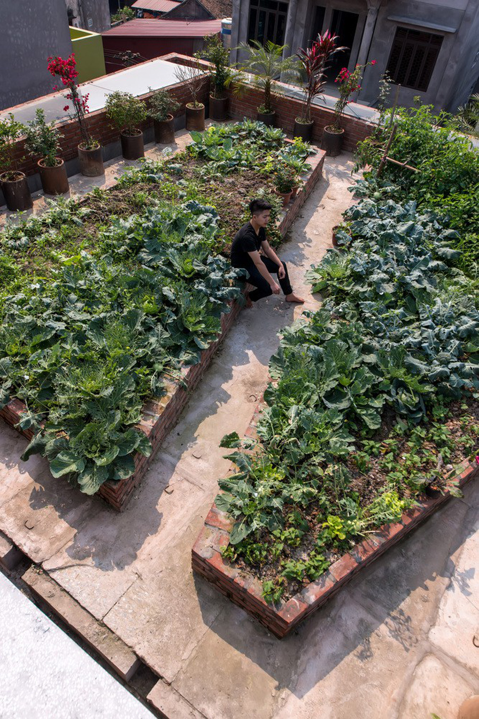 A vegetables garden is planted on the roof of the brick 'cave house'