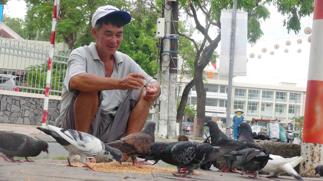 Vietnamese man with hard-earned money feeds pigeons for inner peace, happiness amidst urban hustle