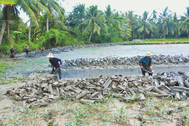 Southern Vietnam faces severe saline intrusion