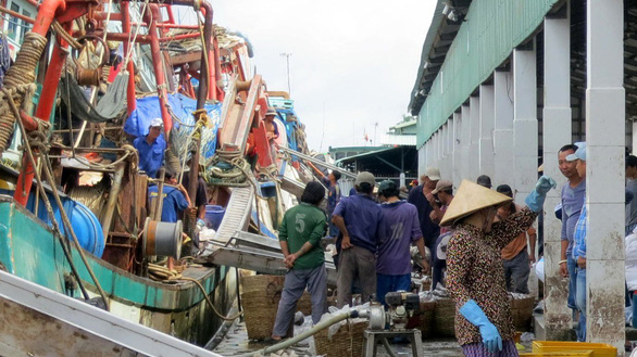 Fishermen trade at a fish market in Kien Giang Province in southern Vietnam. Photo: Tuoi Tre