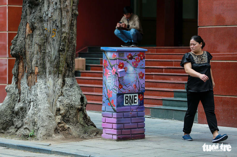 A local resident looks at an electric cabinet colored in floral patterns. Photo: Tuoi Tre