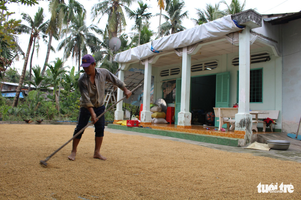 A farmer spreads rice over his front yard in Ho Chi Minh City, Vietnam. Photo: Tuoi Tre