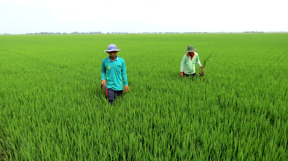 Vietnam's agriculture must be in world's top 15: PM