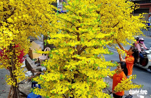 Вьетнам готовит к новому году по лунному календарю (Тэт)