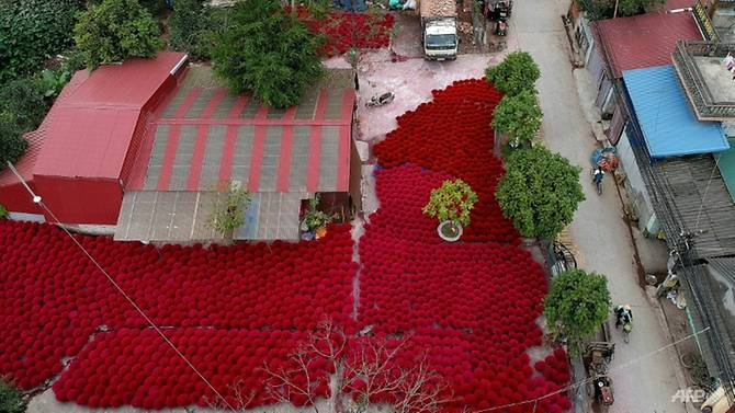 Incense sticks are kept in a courtyard for drying in the village of Quang Phu Cau on the outskirts of Hanoi. Photo: AFP
