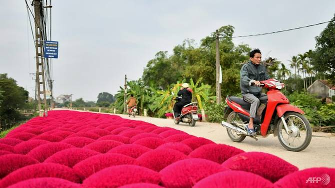 Incense sticks are kept for drying in the village of Quang Phu Cau on the outskirts of Hanoi. Photo: AFP