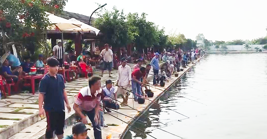Sport fishing competition a disguised gambling in Vietnam's Mekong Delta