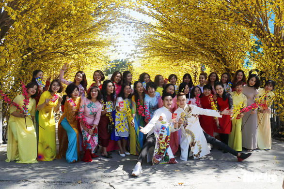 A group photo with the yellow apricot blossoms. Photo: Ngoc Phuong / Tuoi Tre