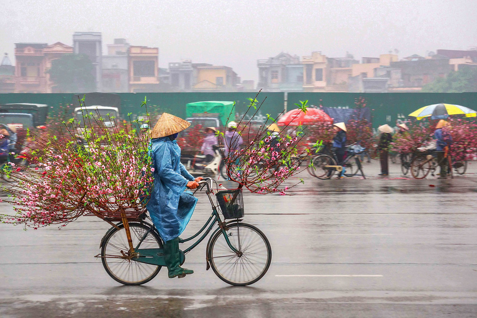Third prize: Spring rain. Photo: Vu Van Hiep (Hoang Hiep)