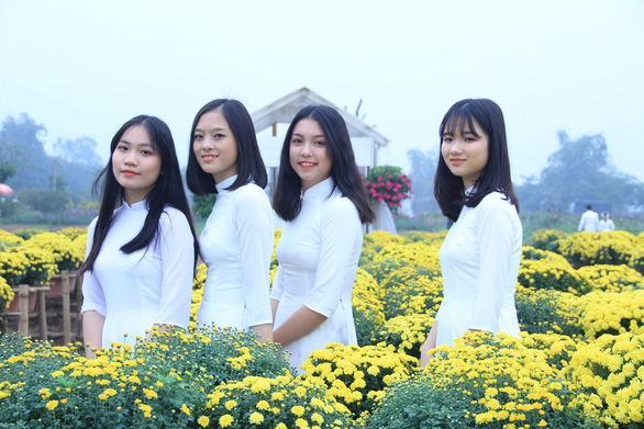 Young women pose for a photo with chrysanthemums in Hanoi. Photo: Duong Lieu / Tuoi Tre