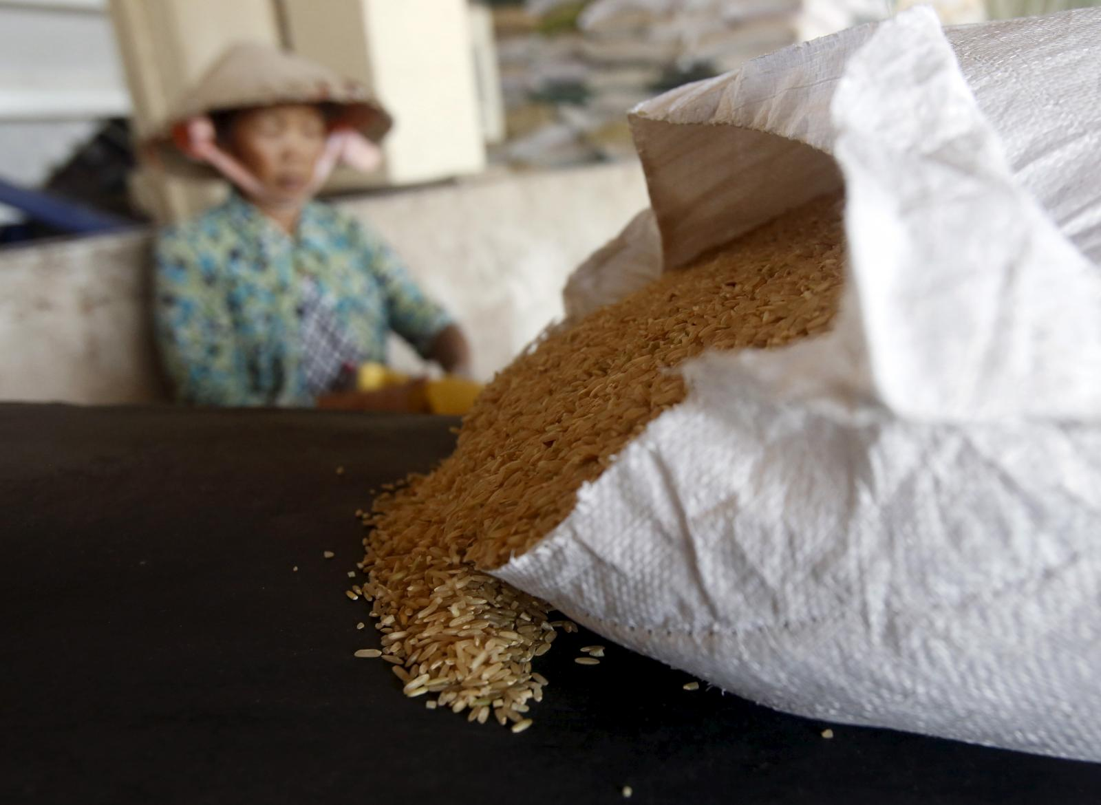Philippines set to import 1.2 mln T of rice as caps removed