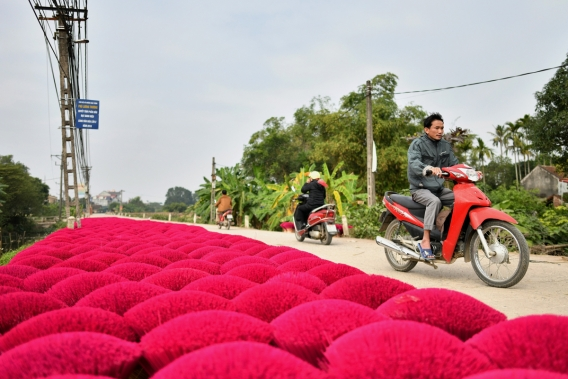 This picture taken on January 3, 2019 shows villagers driving past stacks of incense sticks kept on a street for drying in the village of Quang Phu Cau on the outskirts of Hanoi, Vietnam.  Photo: AFP