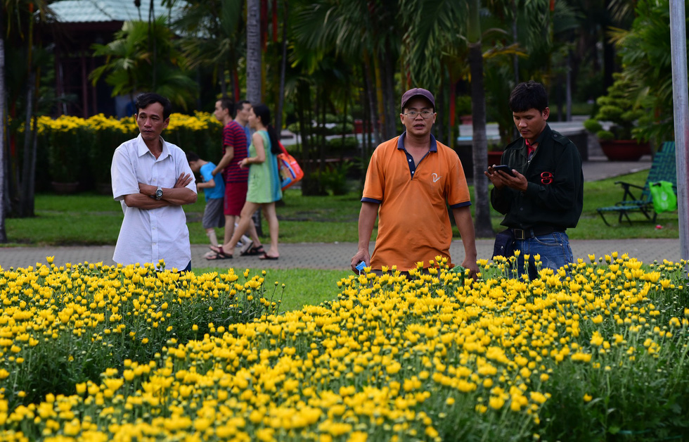 Men stand next to chrysanthemum at a public park in Ho Chi Minh City, January 2019. Photo: Duyen Phan / Tuoi Tre