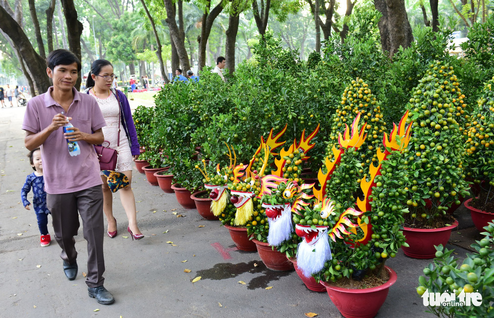 People walk past kumquats sold at a public park in Ho Chi Minh City, January 2019. Photo: Duyen Phan / Tuoi Tre