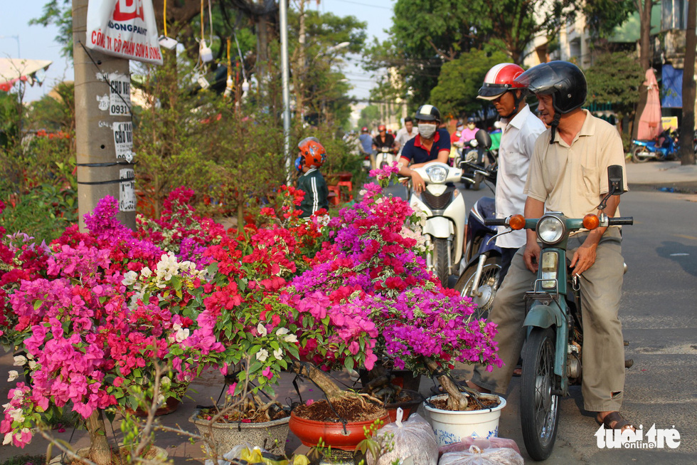 Men look at flowers sold on a sidewalk in Ho Chi Minh City, January 2019. Photo: Thanh Yen / Tuoi Tre