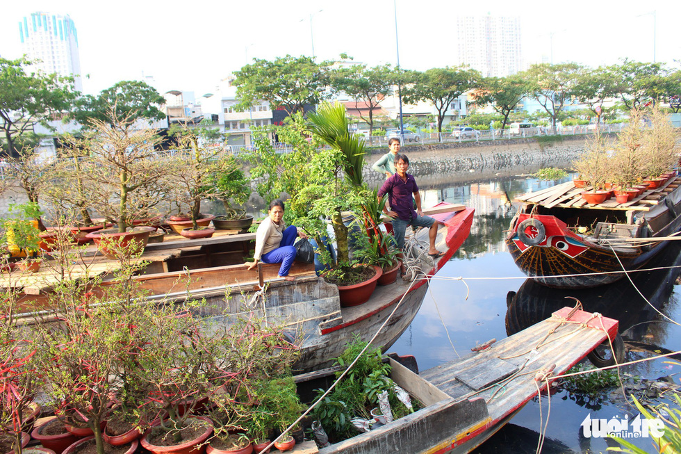 Apricot trees and other ornamental plants are seen on boats along Ben Binh Dong Road in Ho Chi Minh City, January 2019. Photo: Thanh Yen / Tuoi Tre