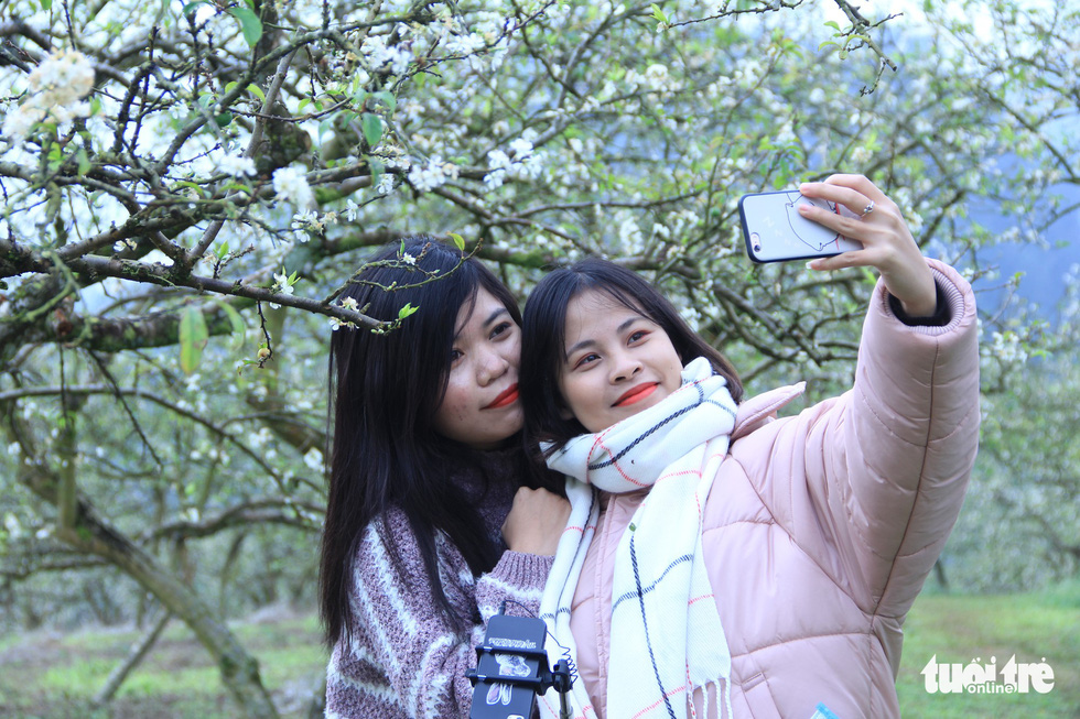 Two visitors take a selfie with the plum flowers. Photo: Tuoi Tre