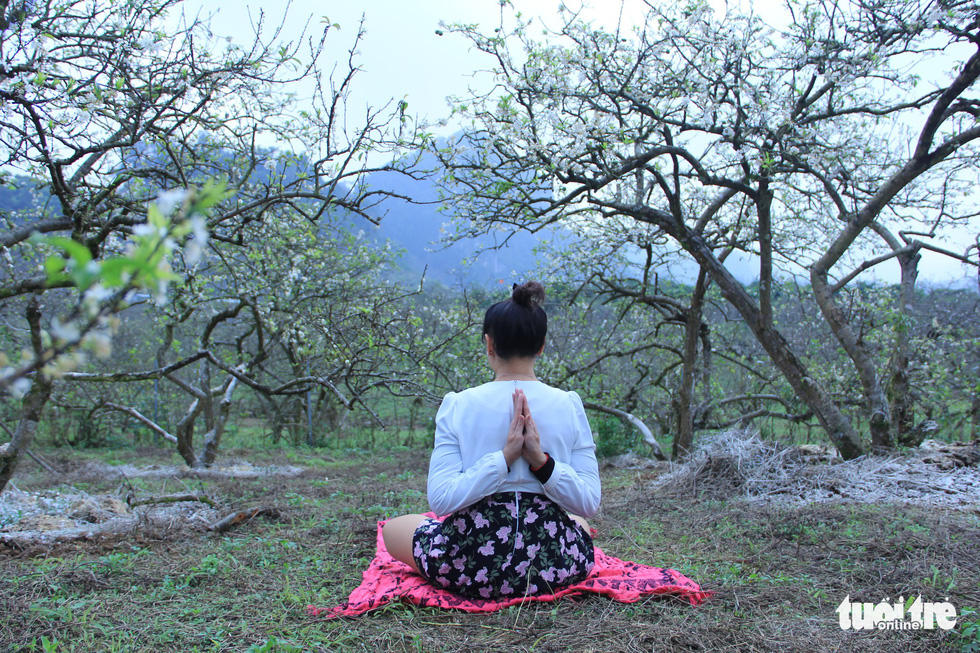 A visitor practices yoga among the serene white color of the blooms. Photo: Tuoi Tre