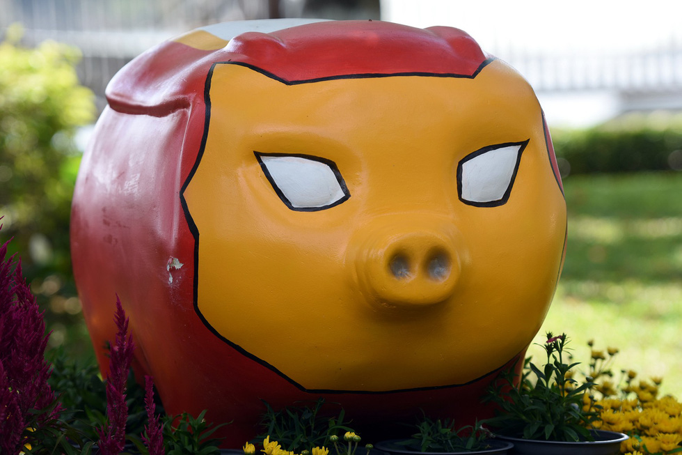 'Iron Pig'. Photo: A Loc / Tuoi Tre