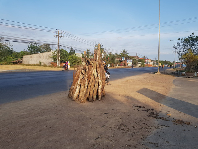 Residents of National Highway 1 prepare firewood for the bonfire on the afternoon of the last day of lunar year
