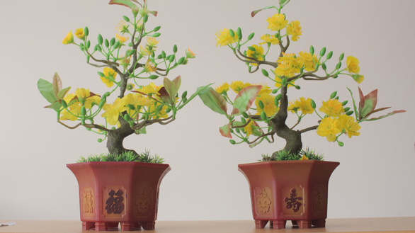 A comparison between the conventional silk-decorated apricot pot (left), and Biet's scaly version (right). Photo: Y Nhung / Tuoi Tre
