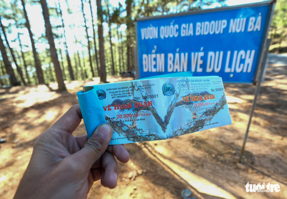 Tickets sold to visitors to the lonely pine tree. Photo: Mai Vinh / Tuoi Tre
