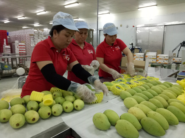 Vietnamese mangoes licensed for export to US