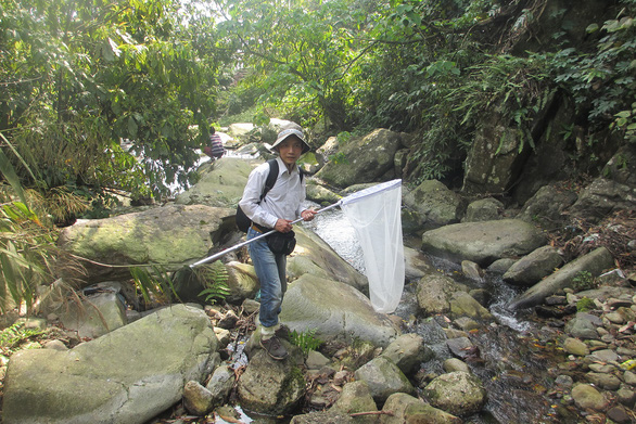 Phan Quoc Toan poses for a picture holding an aerial insect net. Photo: T.D. / Tuoi Tre