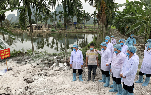 A delegation from the Ministry of Agriculture and Rural Development inspect an affected neighborhood in Hai Phong City on March 2, 2019. Photo: Tien Thang / Tuoi Tre