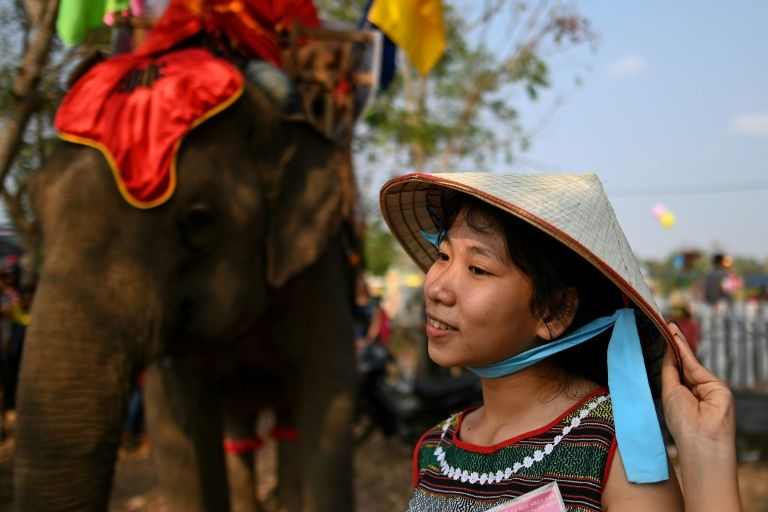 A spectator waits for the start of the race during the Buon Don elephant festival. Photo: AFP