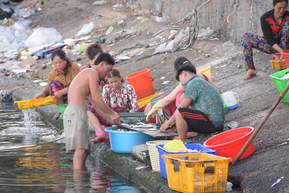 People in Lai Son Commune, Kien Hai District, the southern province of Kien Giang, wash fish and discharge waste and wastewater directly into the sea. Photo: K. Nam / Tuoi Tre