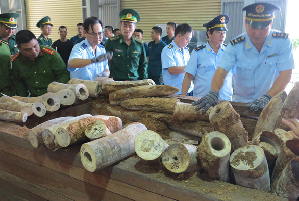 Vietnam seizes record amount of purported elephant tusks in Da Nang
