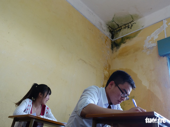 Moss on the ceiling of a classroom at the Pedagogical College of Da Lat, Vietnam's Central Highlands. Photo: M.V / Tuoi Tre