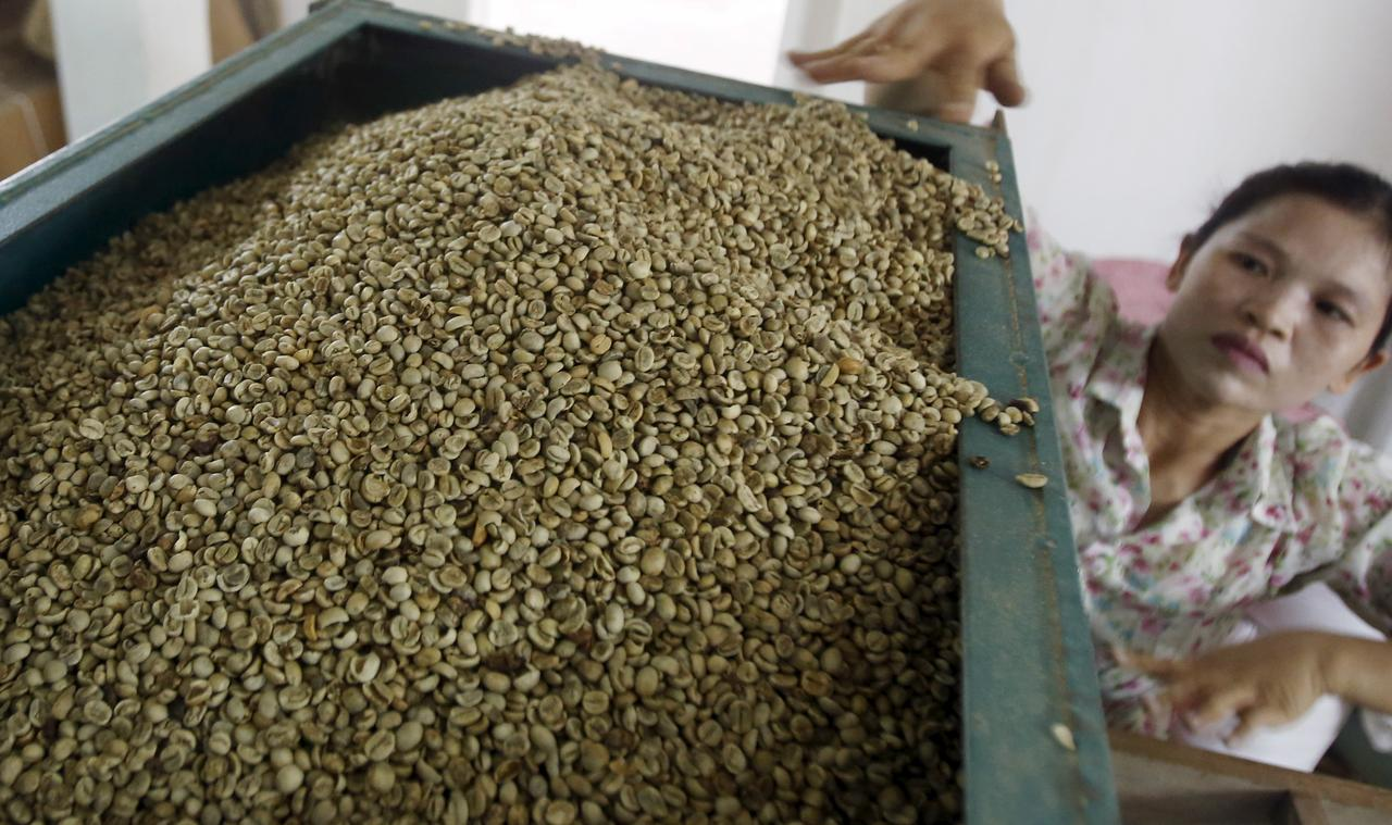 Asia Coffee: Low prices in Vietnam, elections in Indonesia slow trade