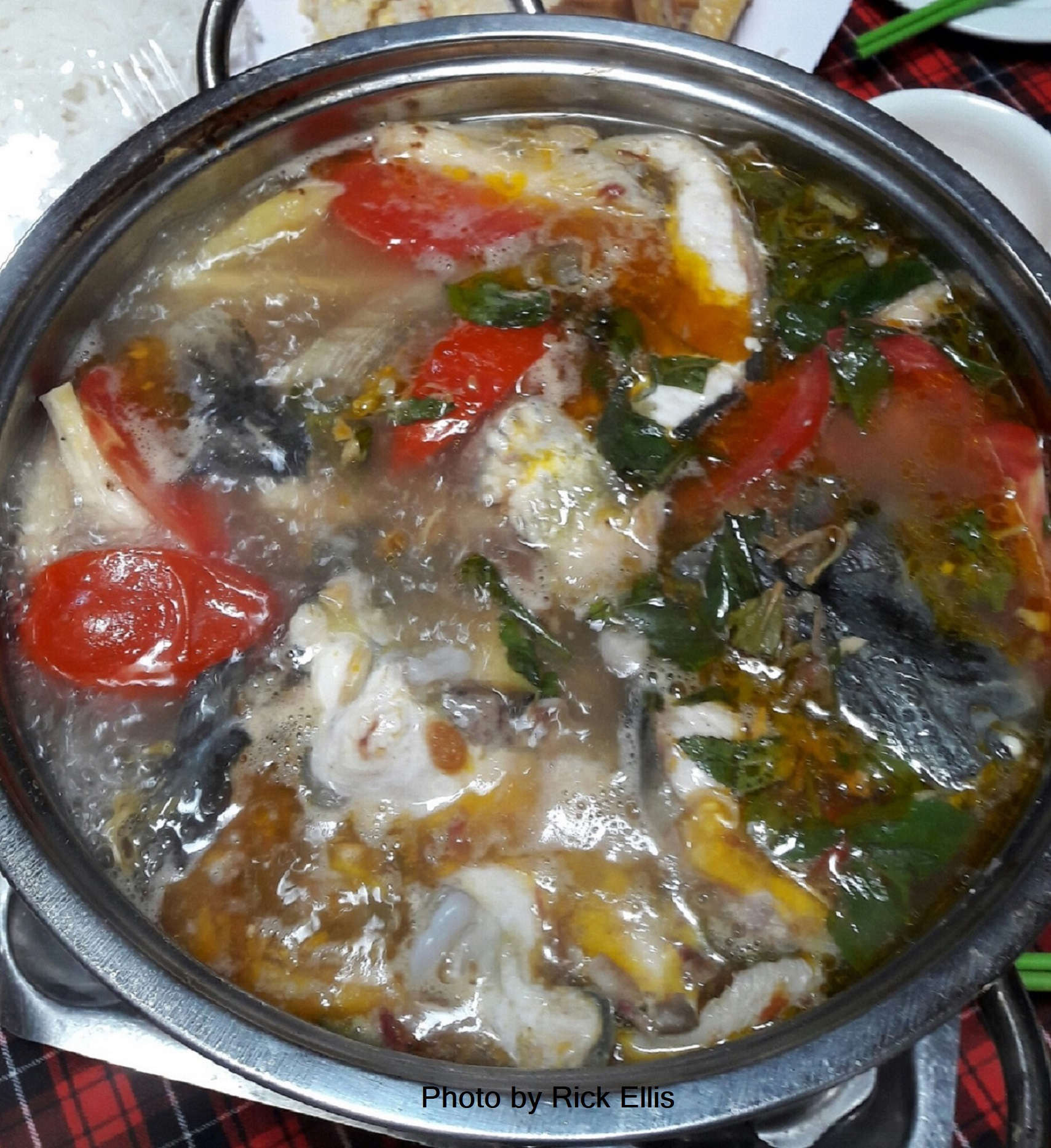 Lau ca tam / sturgeon hot pot