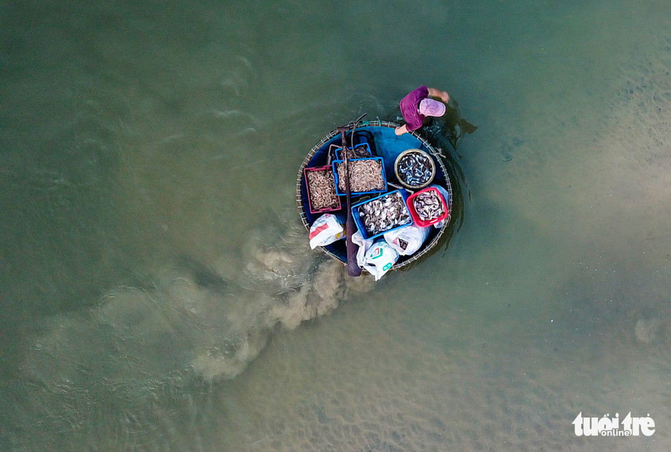 A fisherman brings his fish to the shore on a basket boat. Photo: Nam Tran / Tuoi Tre