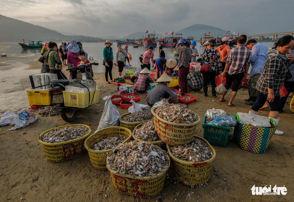 Fresh seafood is sold at Con Go market. Photo: Nam Tran / Tuoi Tre
