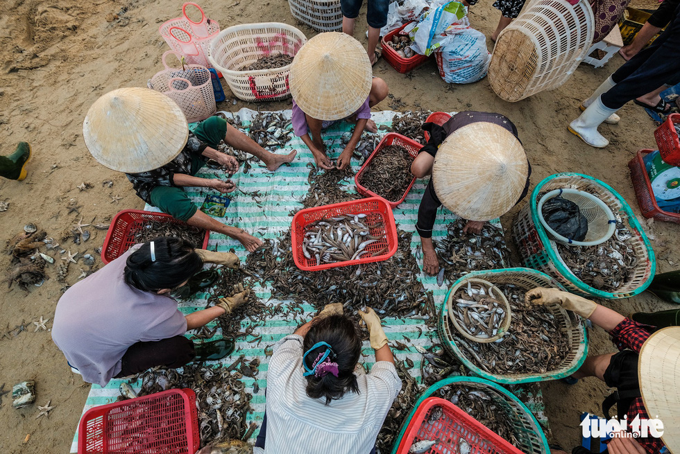 Sellers classify their products. Photo: Nam Tran / Tuoi Tre