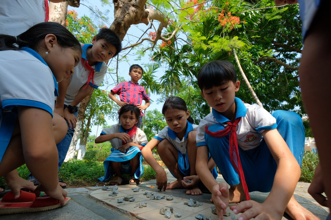 Introducing a Vietnamese school that looks like a park